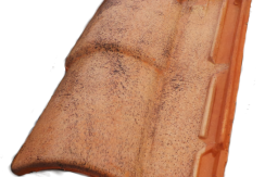 Mediterranean Roof Tile | Romane Canal